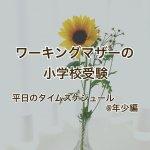 【ワーキングマザーの小学校受験】平日のタイムスケジュール@年少編