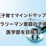【子育てマインドマップ】サラリーマン家庭の子供が医学部を目指す